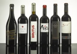 Mallorca Wine Shop - Red Wines Box 1